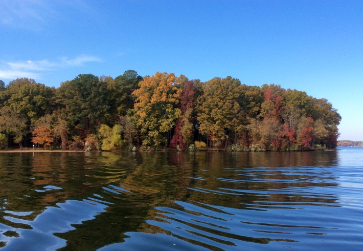 Goat Island Fall Season